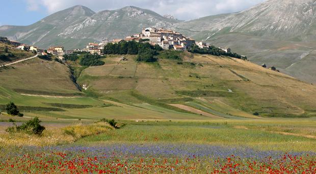 Village of Castelluccio in Umbria among flower fields