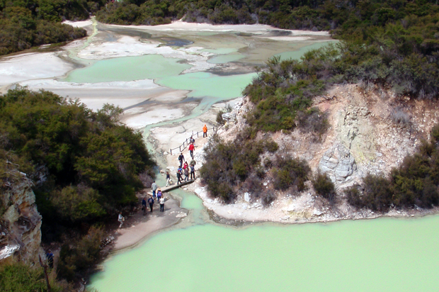 Green lake at Wai O Tapu thermal wonderland, Rotorua, New Zealand