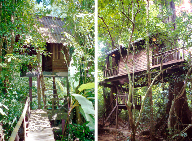 Treehouses in the jungle in Khao Sok, Thailand