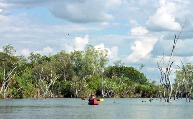 Kayaking on the Ord River in Kununurra, Western Australia