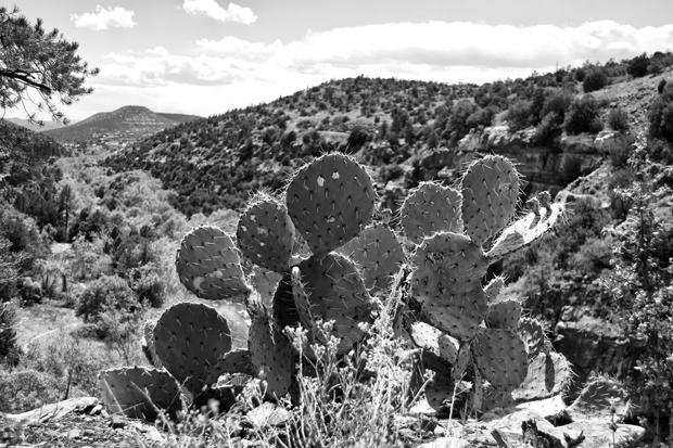 View from Oak Creek Vista, Sedona, Arizona, USA