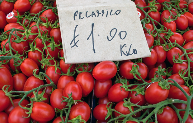 Tomatoes in the market in Catania, Sicily